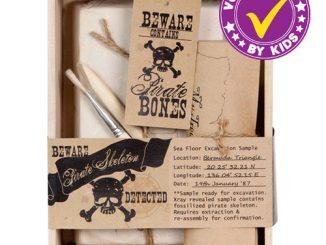 Pirate Skeleton Excavation Kit