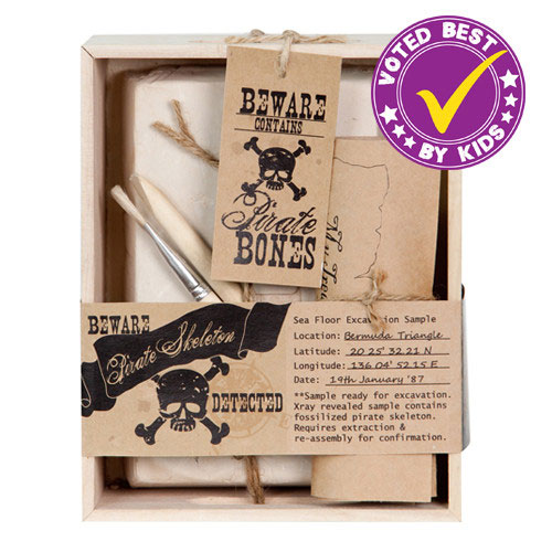 Pirate Skeleton Excavation Kit