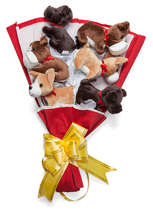 Plush Puppy Bouquet