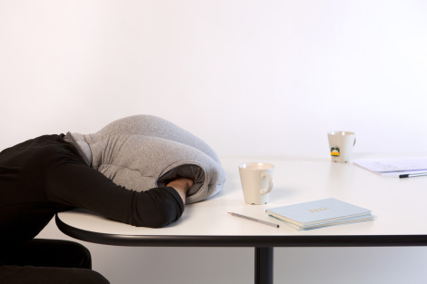 Ostrich Pocket Pillow