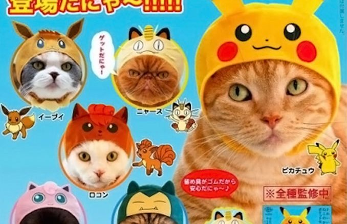 Pokemon Cat Cosplay Hats