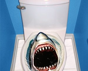 Prank Shark Toilet Topper