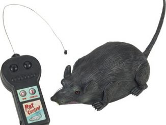 Radio Controlled Rat