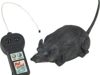 Radio Controlled Rat