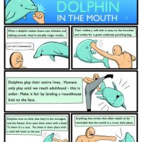 Reasons-to-Punch-a-Dolphin-in-the-Mouth-And-Other-Useful-Guides