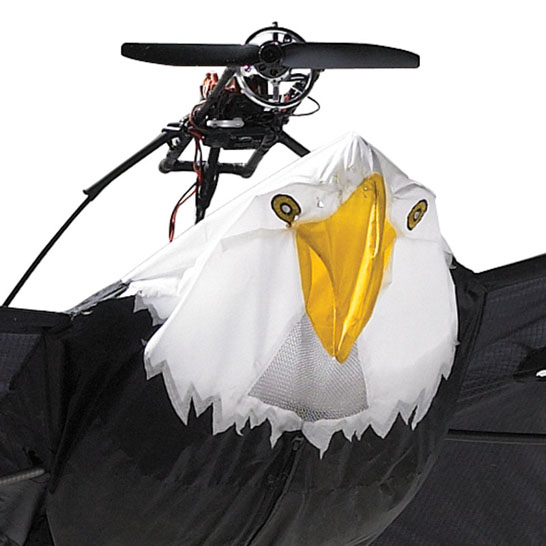 Remote Controlled Bald Eagle