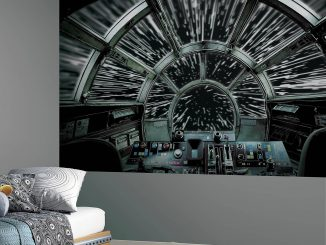 RoomMates Star Wars Millennium Falcon Peel and Stick Mural