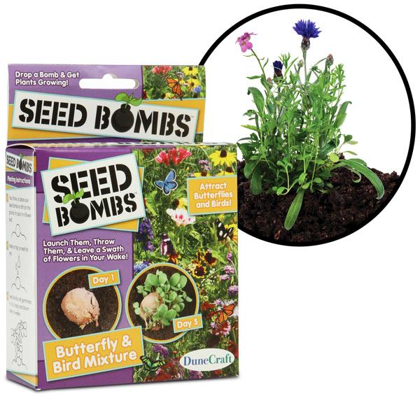Seed Bombs Throw and Grow Plants