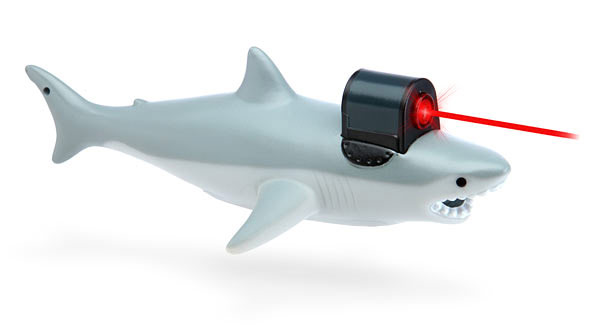 Shark With Frickin Laser Pointer