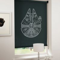 Spaceship Blinds Millenium Falcon