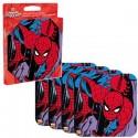Spider-Man Coaster Set