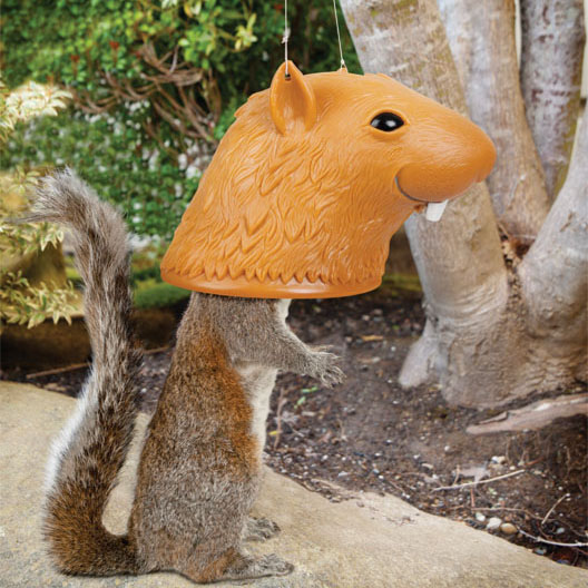 Squirrel Head Squirrel Feeder