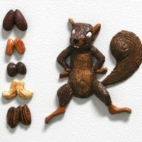 Squirrel with Mixed Nuts - 3D Magnets