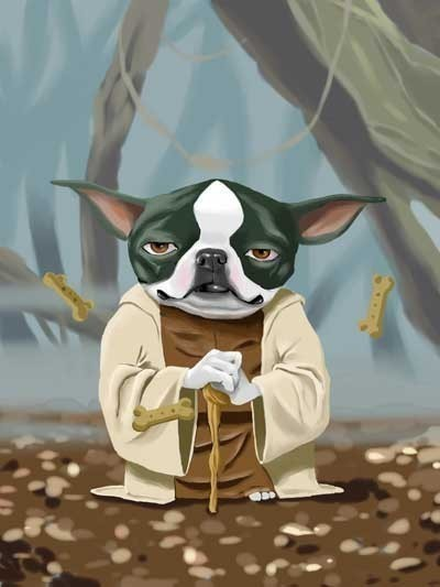 Star Wars Dog Art Boston Terrier as Yoda