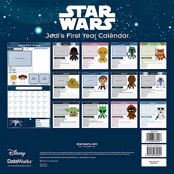 Star Wars Jedi's First Year Wall Calendar