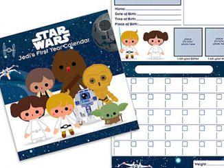 Star Wars Jedi's First Year Wall Calendar