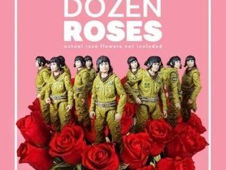 Star Wars The Black Series One Dozen Roses