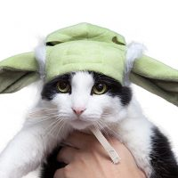 Star Wars Yoda Cat Hood
