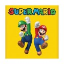 Super Mario Calendar 2013