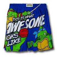TMNT Awesome Boxers