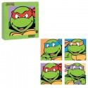 Teenage Mutant Ninja Turtles Glass Coasters