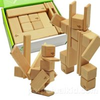 Tegu Discovery Magnet Set