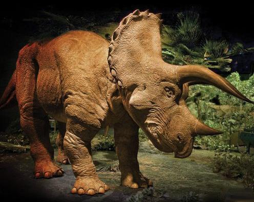 The 20 Foot Animatronic Triceratops