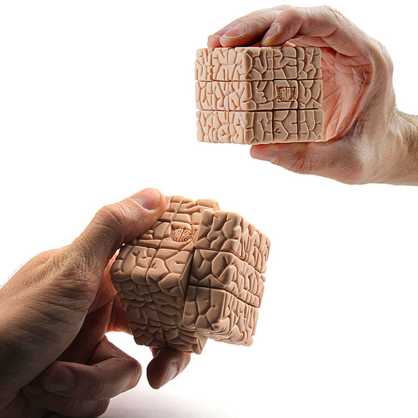 The Brain Cube Puzzle Game