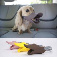 The Oppo Dog Muzzle Quack