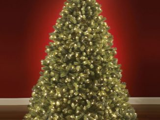 The World's Best Prelit Douglas Fir (LED)
