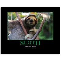ThinkGeek Despair 2019 Wall Calendar Sloth