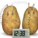 Toysmith 4M Potato Clock