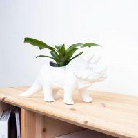 Tricerapot Dinosaur Planter