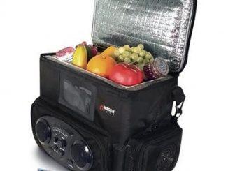 Two Speaker Radio Cooler
