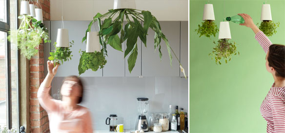 Upside Down Indoor Plant Pot