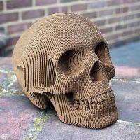 Vince Cardboard Human Skull