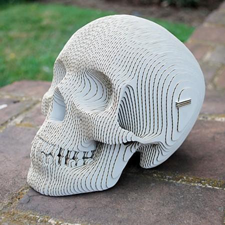 Vince Cardboard Human Skull - white
