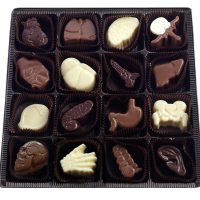 Visual Anatomy Chocolates