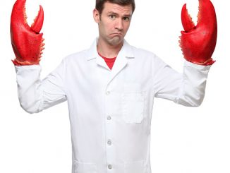Why Not Lobster Hands?