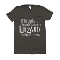 Wizard In The Sheets Ladies T Shirt