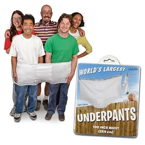 3f2c73ca391 World s Largest Underpants