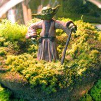 Yoda Terrarium