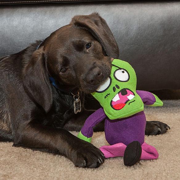 Zombie Dog Chew Toys