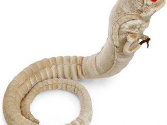 Alien Chestburster Plush