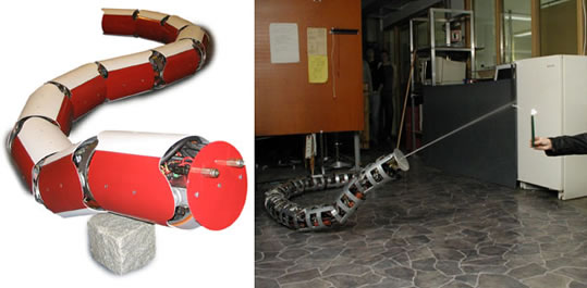 Anna Konda - the Firefighting Snake Robot