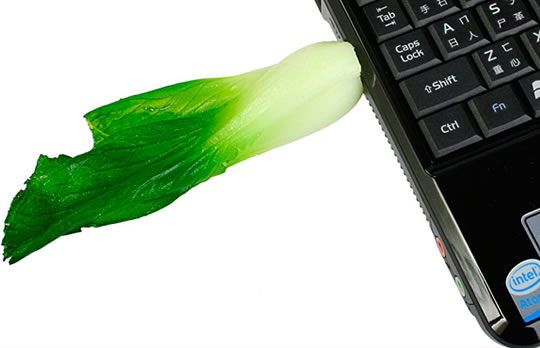 Cabbage USB Flash Drive