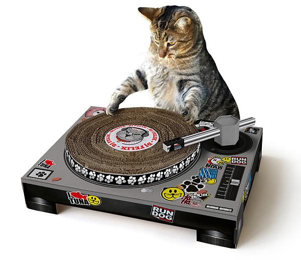 Cat Scratch DJ