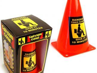 caution toilet cone