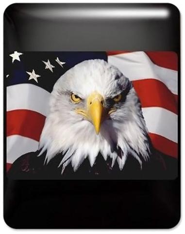 US Flag Bald Eagle iPad Case