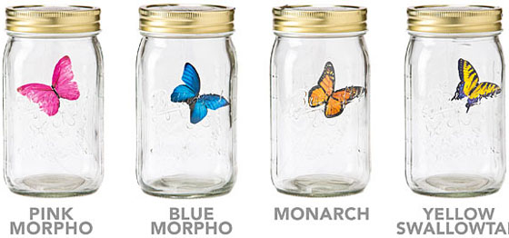 electronic butterfly in a jar samples